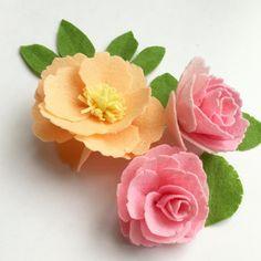 經過多番觀察、硏究和嘗試,終於做好粉橙色牡丹花和粉紅玫瑰花!After several experiments, I made these beautiful…