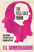 The Tell-Tale Brain by VS Ramachandran – review | Books | The Observer