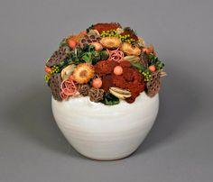 Magyar Szárazvirág Kft. - ŐSZ 2013 My Flower, Flowers, Autumn Crafts, Flower Arrangements, Cute Pictures, House Design, Tableware, Ethnic Recipes, Modern