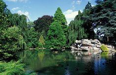 Parc de la Rhônelle,Valenciennes, Nord-Pas-de-Calais (59).