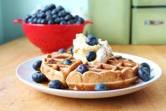 Gluten Free Waffles    ■1/2 cup melted butter/oil  ■6 eggs  ■1 tablespoon vanilla  ■1 tablespoon honey  ■1/4 cup coconut flour, packed  ■3/4 cup almond flour, packed  ■1/2 teaspoon baking soda  ■dash of sea salt  ■1 teaspoon apple cider vinegar