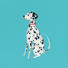 Dalmatian puppy on a turquoise background vector | premium image by rawpixel.com / nunny Dalmatian Dogs, Corgi Dog, Bulldog Puppies, Blue English Bulldogs, Different Breeds Of Cats, Cute Animal Illustration, Animal Illustrations, Puppy Drawing, Image Collage