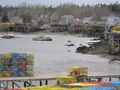 Corea By The Sea in Maine http://www.amazon.com/Tapioca-Fire-Suzanne-Gilbert-ebook/dp/B00FYJQJDO/?ref=dp_kinw_strp_1