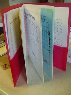 """I like the way this teacher organizes her """"data"""" on her student's throughout the year. This would be a great way to organize a student's IEP and Behavioral Plan."""