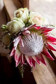 Image result for protea bouquet with baby's breath