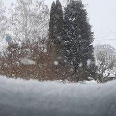 Hej mitt vinterland... Ja se de snöar de va ju roligt... nä