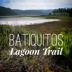 Batiquitos Lagoon in north San Diego County is one of the few remaining tidal wetlands on the southern coast of the United States. Located between Carlsbad and Encinitas, the lagoon is managed as a wildlife preserve by the California Department of Fish and Game. This lagoon is home to several protected nesting areas and water …