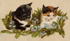 bumble button: Very cute Victorian cat and kitten pictures. free clip art. For collage,scrop booking,altered art,ATC