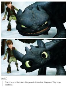 Smile for the day :) Toothless and Hiccup from How to Train Your Dragon