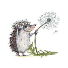 Hedgehog & Dandelion Art Print by littlewhitebunnies Hedgehog Art, Hedgehog Drawing, Cute Hedgehog, Animal Paintings, Animal Drawings, Cute Drawings, Hedgehog Illustration, Cute Illustration, Woodland Creatures