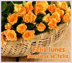 Rose Wallpaper, Wallpaper Backgrounds, Orange Roses, Flower Basket, Flower Decorations, Background Images, Still Life, Serving Bowls, Fruit