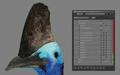 How to create realistic wildlife textures   Creative Bloq