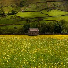 I can't wait to see His beautiful English countryside Swaledale, Yorkshire, England Yorkshire England, Yorkshire Dales, North Yorkshire, Visit Yorkshire, Beautiful World, Beautiful Places, England And Scotland, All Nature, Felder
