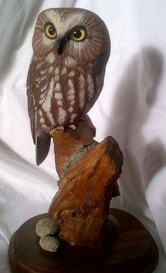 Evelyn Hurford - - Saw-whet Owl Carving Saw Whet Owl, Carving, Bird, Animals, Animales, Animaux, Wood Carvings, Birds, Sculptures