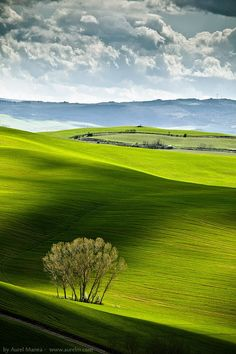 Fields & Shadows, Tuscany, Italy