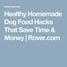 Healthy Homemade Dog Food Hacks That Save Time & Money | Rover.com