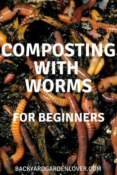Compost With Worms Composting with worms for beginners. Get the best garden harvest this year by using worms to enrich your soil.Composting with worms for beginners. Get the best garden harvest this year by using worms to enrich your soil. Garden Compost, Hydroponic Gardening, Garden Pests, Hydroponics, Container Gardening, Vegetable Gardening, Flower Gardening, Aquaponics Diy, Veggie Gardens