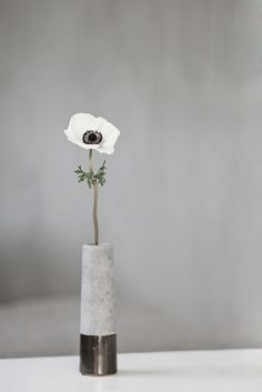 anemone in concrete vase decoration Ikebana, Flower Vases, Flower Art, Flower Arrangements, Anemone Flower, Cactus Flower, Deco Floral, Arte Floral, White Flowers