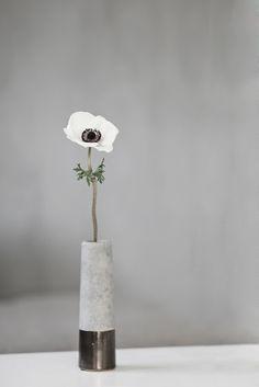 anemone in concrete vase | decoration . Dekoration . décoration | @ frufly |