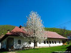 Manastirea Prislop Romania, Cabin, House Styles, Home Decor, Homemade Home Decor, Cabins, Cottage, Interior Design, Home Interior Design