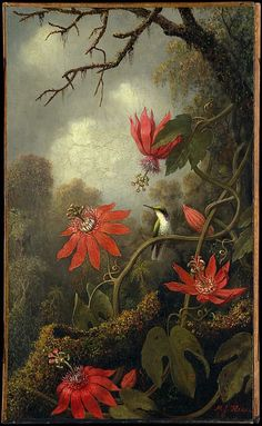 Hummingbird and Passionflowers ~ Hummingbird and Passionflowers Artist: Martin Johnson Heade (1819–1904) Date: ca. 1875–85 Medium: Oil on canvas Dimensions: 20 x 12 in. (50.8 x 30.5 cm) Classification: Paintings Credit Line: Purchase, Gift of Albert Weatherby, 1946