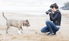 By Amiee Stubbs, Nations Photo Lab featured photographer Whether you're photographing a Border collie, a Pembroke Welsh Corgi, or an Irish Water Spaniel, taking snaps of a pooch can be a challenge. They're all easily distracted and have difficulties sitting still for long. Here are five tips for capturing the very best shot of your […]