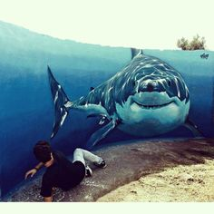 Le niveau des mers monte, gare à toi ! / Grand Requin Blanc. / Great White shark. / By ViM