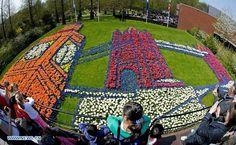 Keukenhof também conhecido como o Jardim da Europa, é o maior jardim de flores do mundo. Está situado perto de Lisse, na Holanda.