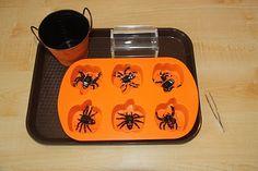 fine motor spider activity