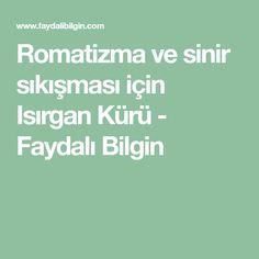 Romatizma ve sinir sıkışması için Isırgan Kürü - Faydalı Bilgin