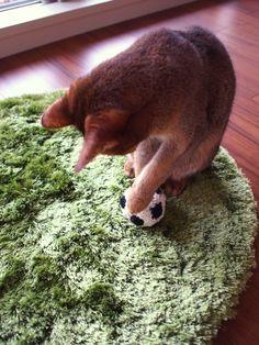 ●編みもの|joli!joli!のおうちごはんとおかしとねこ♪