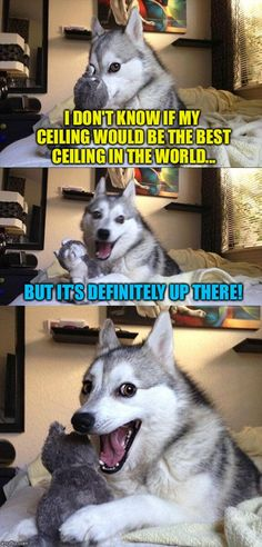 Bad Pun Dog | I DON'T KNOW IF MY CEILING WOULD BE THE BEST CEILING IN THE WORLD... BUT IT'S DEFINITELY UP THERE! | image tagged in memes,bad pun dog | made w/ Imgflip meme maker