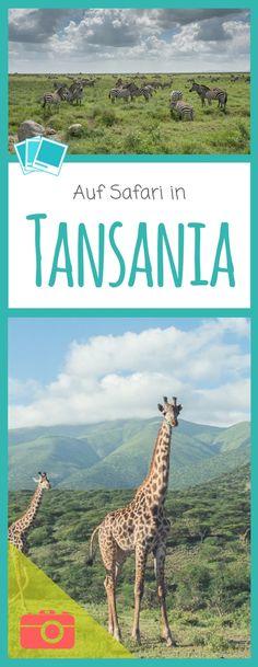 Viele wichtige Tipps zu den Nationalparks in Tansania in denen sich eine Safari lohnt: Serengeti – grenzenlose Tierwelt und Ngorongoro Krater am Kilimandscharo.