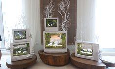 """""""Plant the Future"""" installation"""