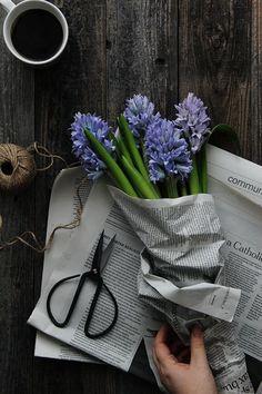 Purple flowers in newsprint