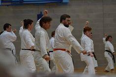 Oh Kami Karate Club: Training with Sensei Kawasoe Friday 5th June15, pics thanks to Marius