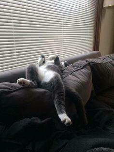 I can sleep anywhere