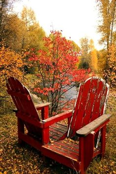 These free Adirondack chair plans will help you build a great looking chair in just a few hours, Build one yourself! Here are 18 adirondack chair diy Marie W, October Gallery, Happy Fall Y'all, Belle Photo, Fall Halloween, Autumn Leaves, Autumn Fall, Autumn Cozy, Golden Leaves