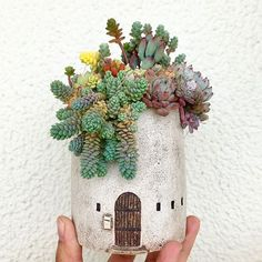 I find these pots to be really cute! These were posted by @nicoknit and the pots were by @akipottery Go check their grams, there's more to see! #succulents #JenVista #SHAREtheLOVE #following #pottery #JenSucculents #PlantsMakePeopleHappy