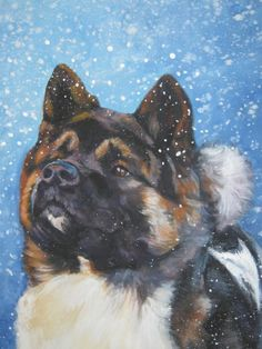 Akita art print canvas print of painting by LA Shepard 12x16 dog art