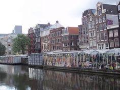 Amsterdam Flower Market    http://americanhomestead.blogspot.com