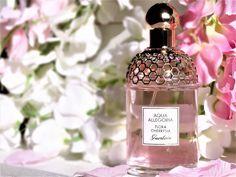 - Perfume Bath And Body. – Perfume Bath And Body Works – # - Perfume Diesel, Best Perfume, Perfume Bottles, Bath Body Works, Guerlain Perfume, Perfume Fragrance, Clive Christian Perfume, Eye Makeup, Make Up