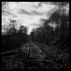 Beautiful Holga black and white photograph of abandoned train tracks. There's a reason I love my Holga so. Insect Photography, Photography 101, Camera Photography, Black And White Landscape, Black White Art, Abandoned Train, Toy Camera, Holga, Lomography