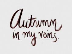 Autumn approaches...