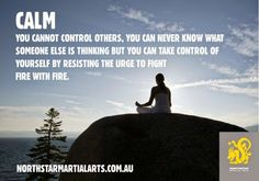 #calm - you cannot control others, but you can #control yourself. Always resist the urge to fight fire with fire - Northstar Martial Arts #wealthadviser