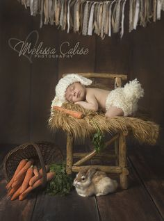 Melissa Calise Photography (Newborn Baby Boy Easter Session Photo Shoot Posing Ideas Bunny Rabbit Carrots Wood)