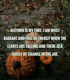 "Autumn quotes - ""Autumn is my time. I am most radiant and full of energy when the leaves are falling and there is a ghost of change in the air. John Piper, Autumn Aesthetic, Happy Fall Y'all, Hello Autumn, Time Of The Year, Autumn Inspiration, Fall Halloween, Halloween Ghosts, Pumpkins"