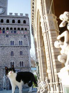 Davanti alle bellezze di Firenze