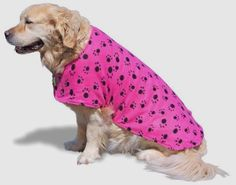 Pro Dog Drying Towel Jacket       Deal of the day >>>   http://amzn.to/2bztqB3