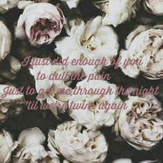 Twin Skeletons ~Fall Out Boy Fall Out Boy Lyrics, Golden Temple, White Roses, White Flowers, Mixtape, Decoration, Temples, Pretty Woman, Flower Power